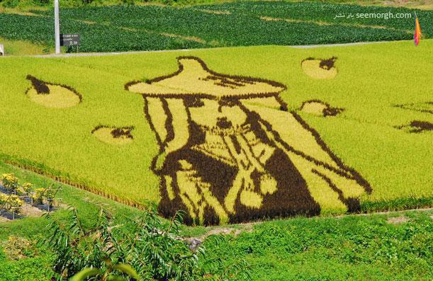 هنرنمایی جالب کشاورزان بر روی شالیزارها!!