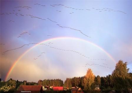 لیتوانی کشوری از جنس کارت پستال!!
