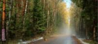 عکس هایی از زیباترین جاده های دنیا