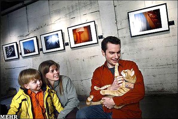 گربهای که نمایشگاه عکس برپا کرد!!