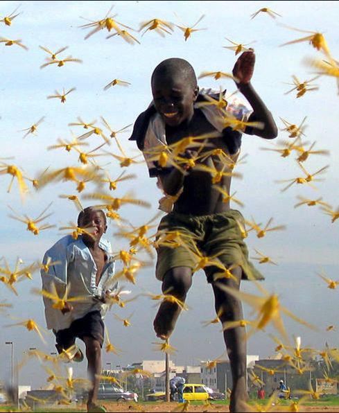 عکسهای برتر دنیا در 10 سال گذشته  www.fogholade.mahtarin.com