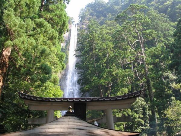 عکس هایی دیدنی از 10 آبشار بسیار زیبا و برتر دنیا