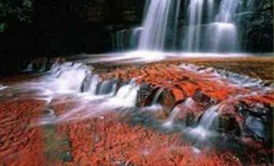 عکس هایی بی نظیر از رنگارنگ ترین رودخانه در جهان