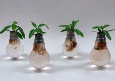 عکس های دیدنی از خلاقیت در استفاده از حباب لامپ