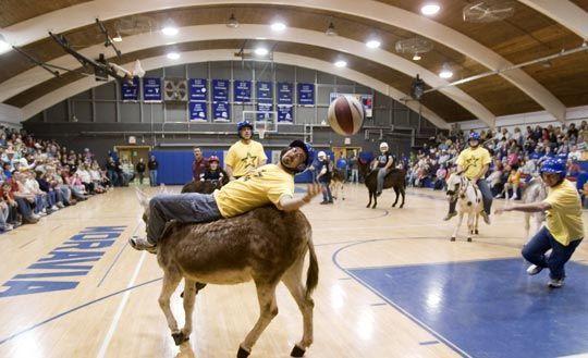 عکس های جالب از مسابقه بسکتبال با الاغ!