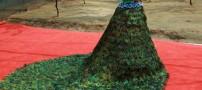 تهیه یک لباس عروس زیبا با 3000 پر طاووس! +عکس