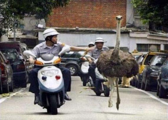 عکس های جالب و دیدنی شنبه 16 مهر 1390