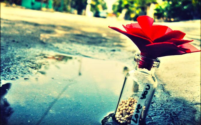 عکس های عاشقانه و جدید تقدیم به کاربران ایران ناز