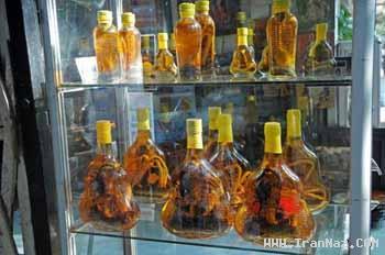 ساخت و فروش شراب مار و عقرب در ویتنام +عکس