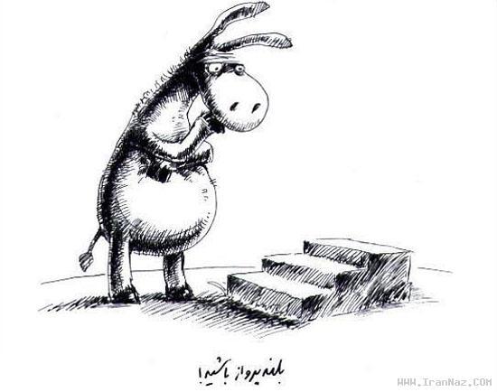 جدیدترین راه های موفقیت از نوع خرکی (طنز تصویری)