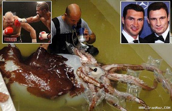 عکس های عجیب و بزرگ ترین ماهی های صید شده