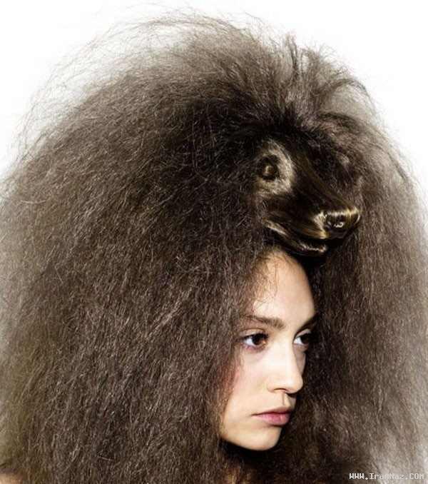 عکس های آرایش عجیب و باور نکردنی موی خانم ها