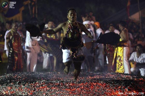 عکس های وحشتناک از جشنواره گیاهخواری در تایلند