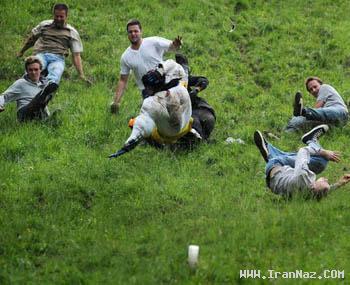 خنده دار ترین و احمقانه ترین مسابقات جهان +تصاویر
