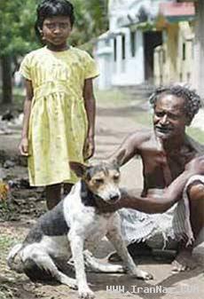 ازدواج دختر 9 ساله با یک سگ به زور خانواده +عکس