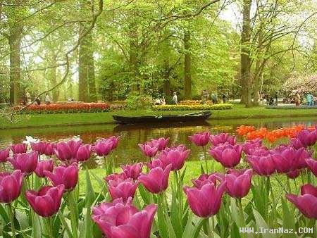 عکسهای جالب و بسیار دیدنی از زیبا ترین پارک جهان