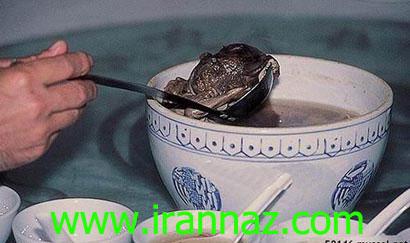 وحشتناکترین غذای جهان، سوپ جنین انسان +تصاویر