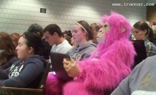 0.202323001329254153 irannaz com عکس های خیلی خیلی خنده دار از دوران دانشجویی