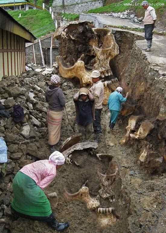 عکسهای جالب از کشف اسکلت انسان های غول پیکر! ، www.irannaz.com