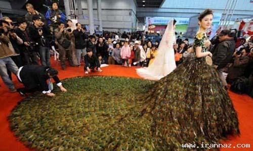 عکس های لباس عروسی جالب با 3 هزار پر طاووس!