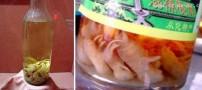 فروش چندش آور ترشی بچه موش در چین!! +عکس