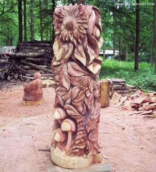 عکس های هنرنمایی باور نکردنی با درختان خشکیده!