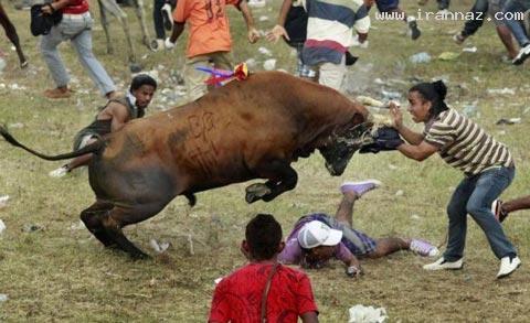عکس های بسیار خنده دار از بدشانس ترین انسان ها