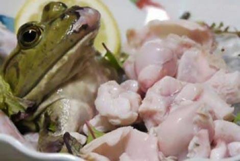 سرو قورباغه زنده به عنوان غذایی خوشمزه!! +عکس