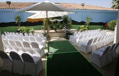 مراسم گرانقیمت ازدواج 2 سگ میلیاردر با هم+تصاویر