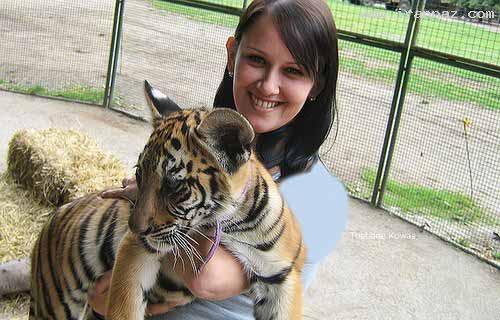 عکس های باورنکردنی از عجیب ترین باغ وحش جهان