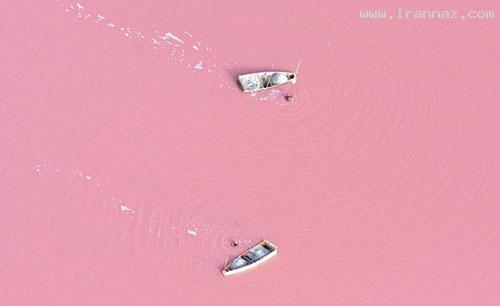 دریاچه ای عجیب که رنگ آب آن صورتی است! +تصاویر