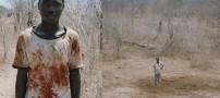 خوردن فیل در 2 ساعت از شدت گرسنگی! (تصویری)