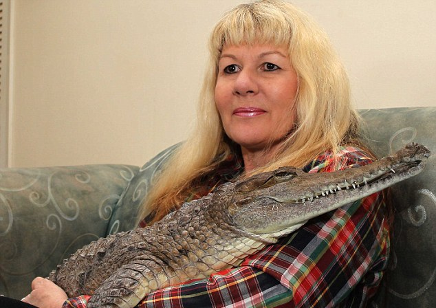 زنی نترس که عاشق یک تمساح شده است!!