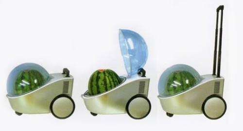 یخچال سیار مخصوص هندوانه !