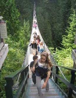 پلی که قدم گذاشتن بر روی آن جرأت می خواهد!