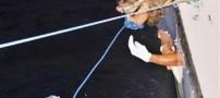رکورد بزرگ اولین شناگر زن بدون قفس محافظ +تصاویر