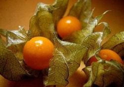 عرضه میوه 40 هزار تومانی در بازار ایران! + عکس