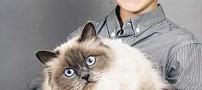 این گربه توانست یک کودک لال را درمان کند! (+عکس)