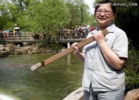 شغل عجیب و جالب این زن در یک باغ وحش (تصویری)