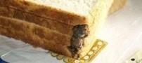 پیدا شدن یک موش پخته شده در نان صبحانه (+عکس)
