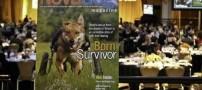 این سگ ایرانی سوژه جدید خبرنگاران آمریکایی شده