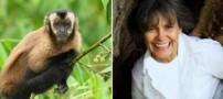 ماجرای بسیار جالب خانمی که با میمون ها بزرگ شد