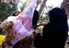 وقتی که دختران سعودی قصاب میشوند! (عکس)