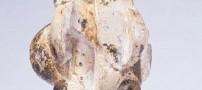 اولین تصویر حکاکی شده زنی مربوط به 26 هزارسال قبل