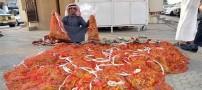 ملخ ها غذایی لوکس برای سعودی ها! (عکس)