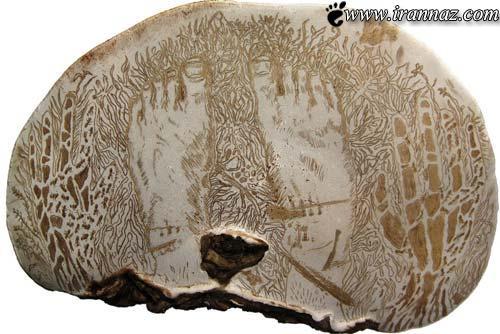 هنرنمایی شگفت انگیز و خارق العاده روی سطح قارچ