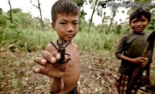 این کودکان از عقرب و رتیل ها تغذیه می کنند! (عکس)