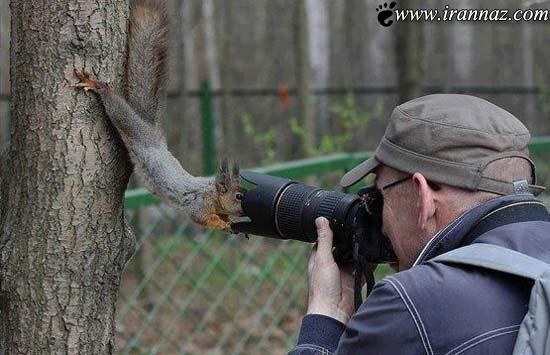 دیدن این عکس های خنده دار و جالب را از دست ندهید