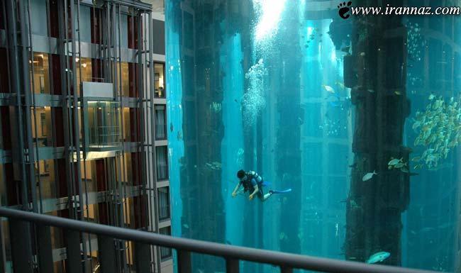 عکس های زیبا و خارق العاده ترین آکواریوم های جهان