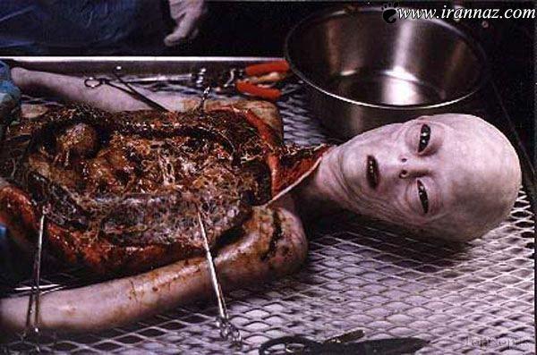 عکس های عجیب و غیر عادی از بیگانگان مرده! (18+)